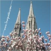 1090 - Votivkirche, Frühling