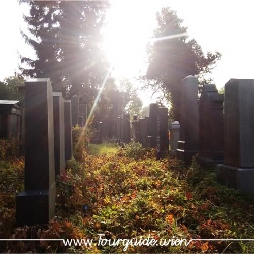 1110 - Zentralfriedhof, alter jüdischer Teil, abends