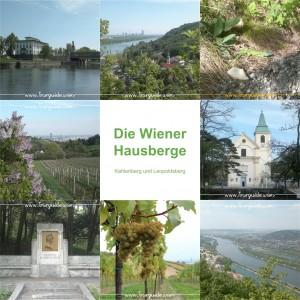 Die Wiener Hausberge